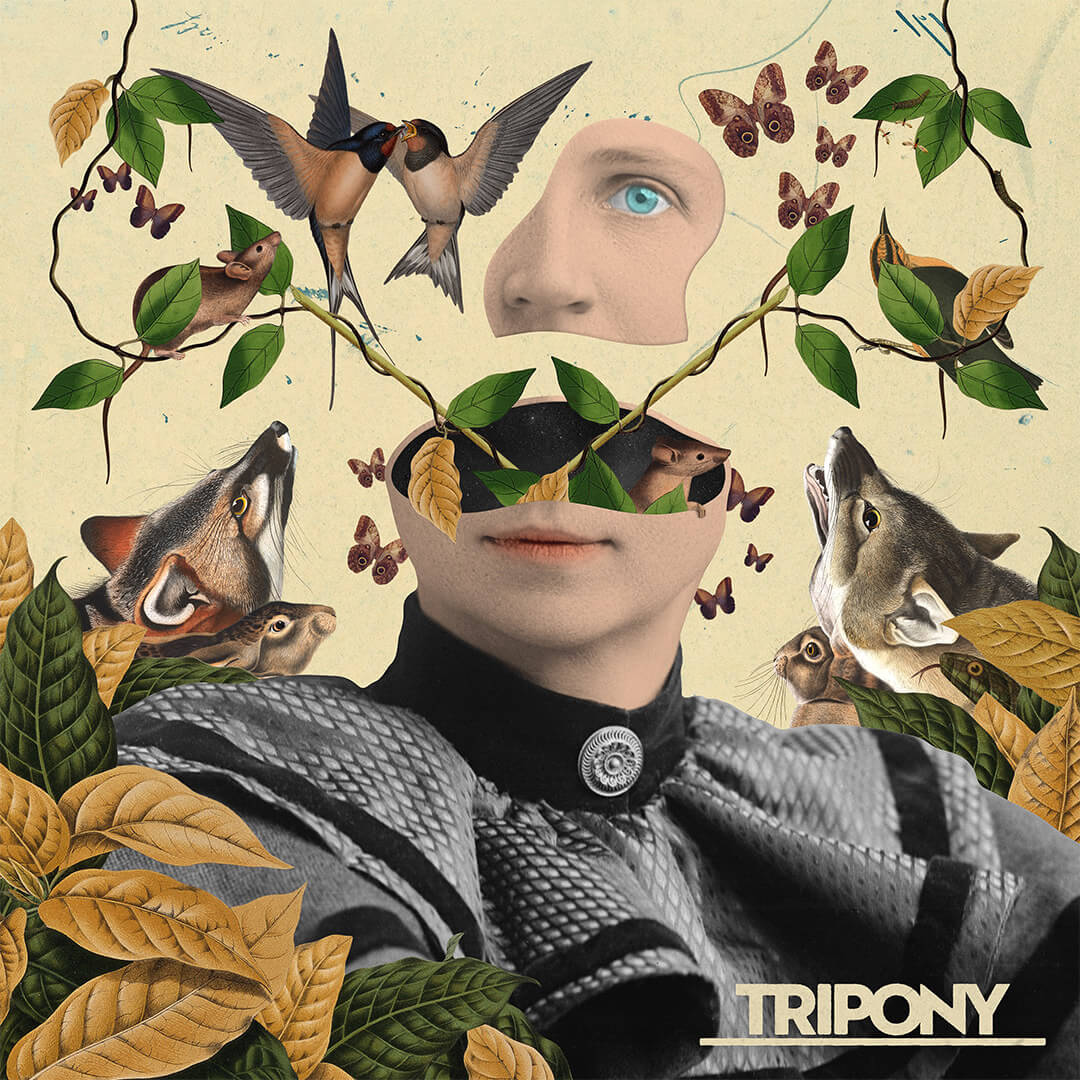 Tripony / Cover Artwork